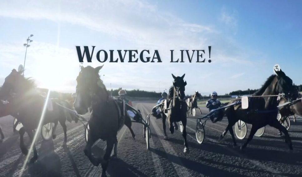 Wolvega Live!